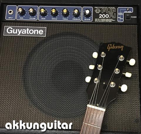 guyatone0510.jpg