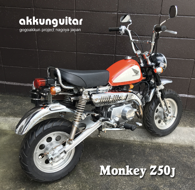 monkey-1218a.jpg
