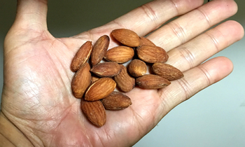 nuts7.jpg